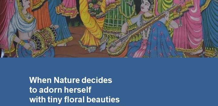 Appreciation of Krishna's Divine Flute and tribute to Nature